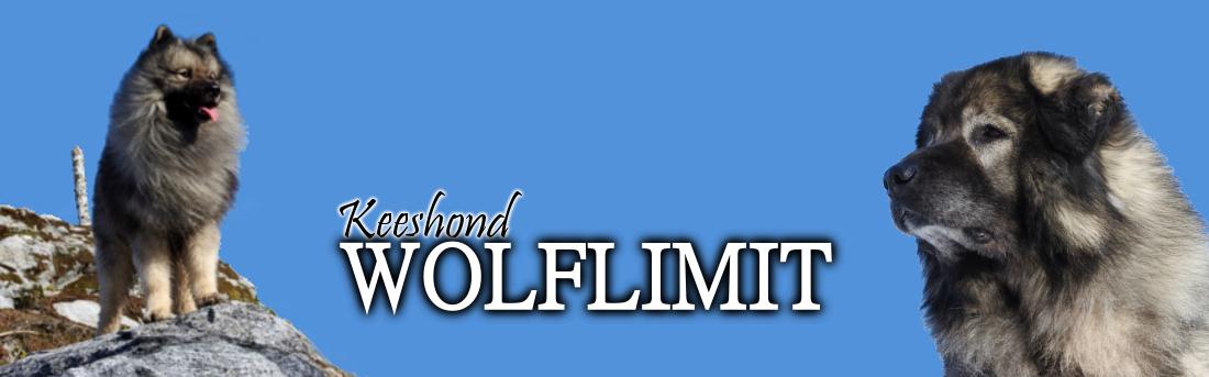 Lehtirannan Wolflimit