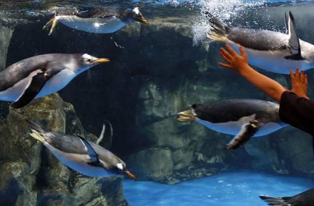 Aquarium Utah Utah 39 S Labor Market And Economy February