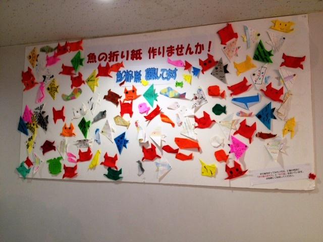 花 折り紙 折り紙 2月 : sunpiazza-aquarium.blogspot.com