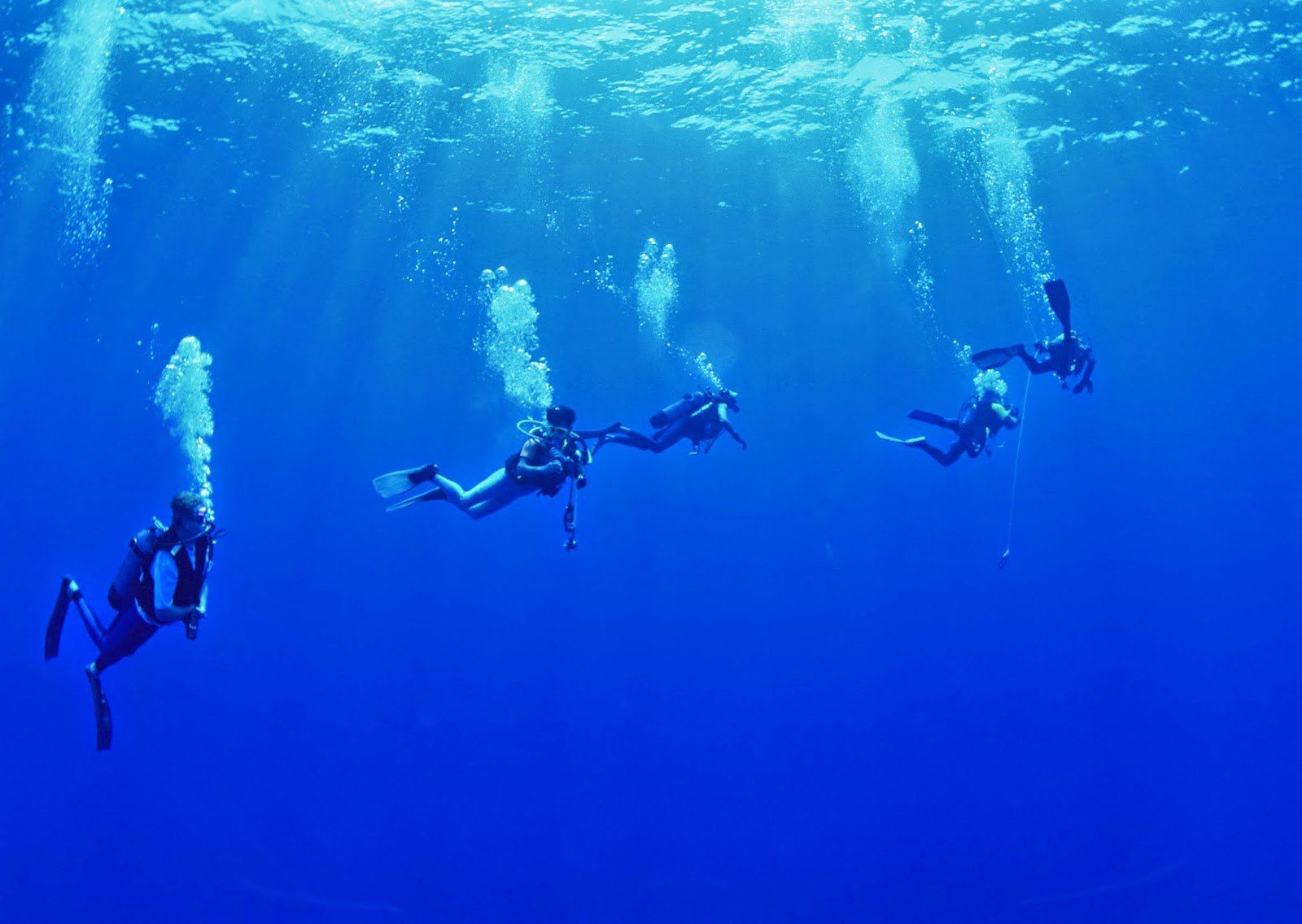 Scuba Diving Wallpapers - HD - Android Apps on Google Play
