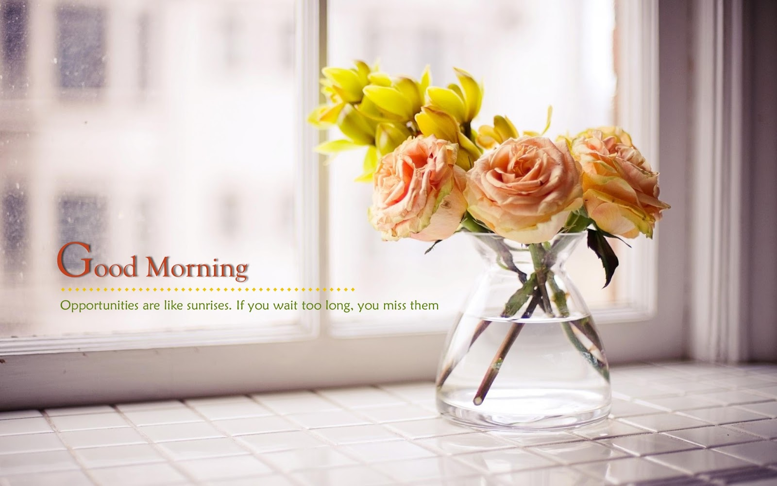 Best Good Morning Pictures with Flowers Download