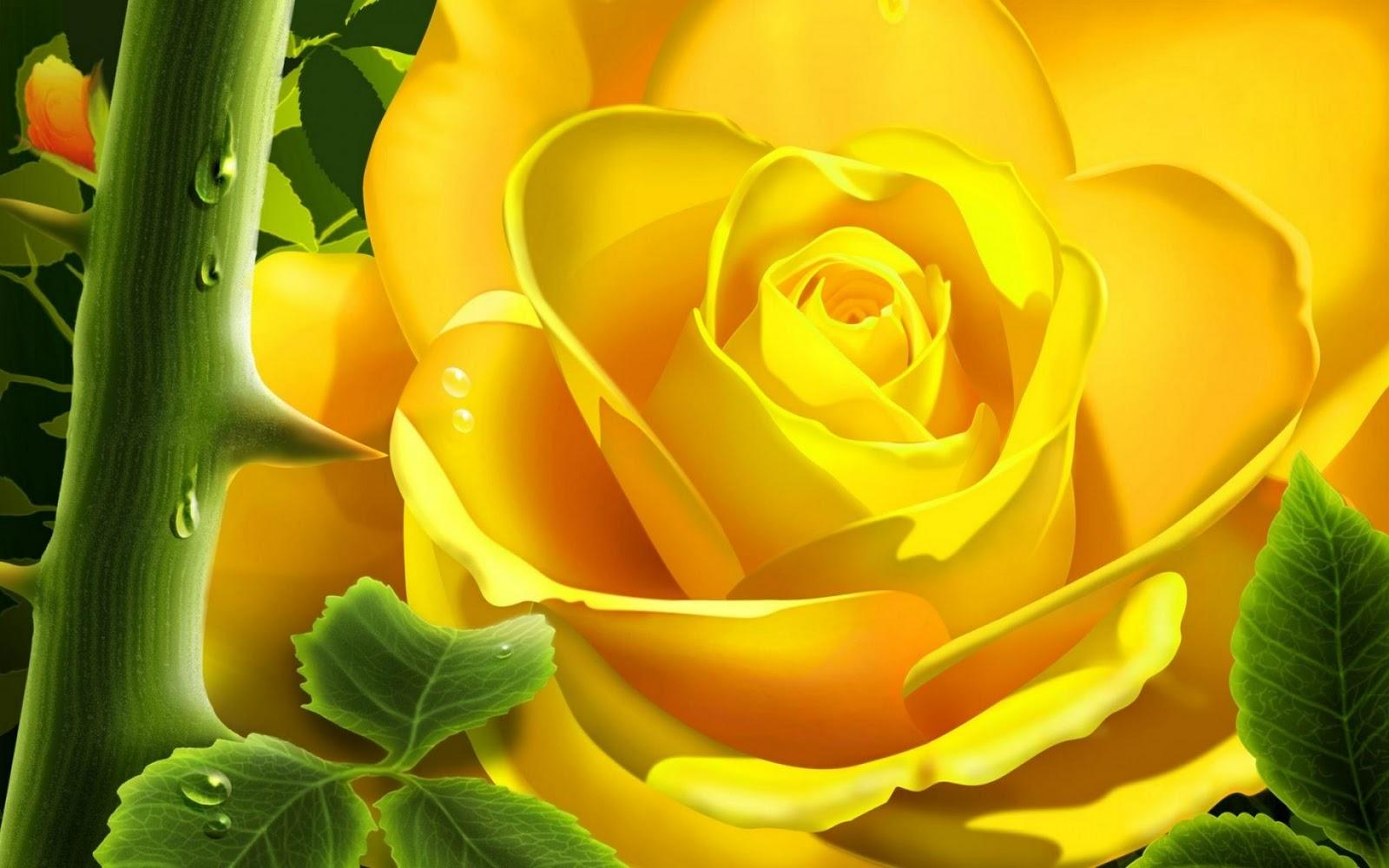 http://1.bp.blogspot.com/--9UtqB8Qaaw/TpK6UqYlAWI/AAAAAAAAA9Y/sKeNibCyw9k/s1600/yellow.jpg