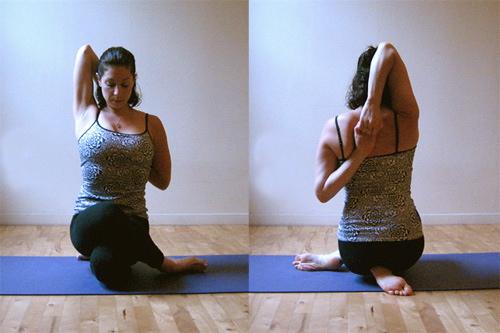 gomukasana posture