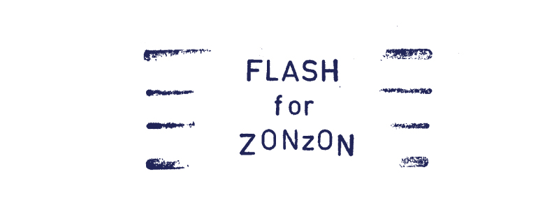 Flash For Zonzon