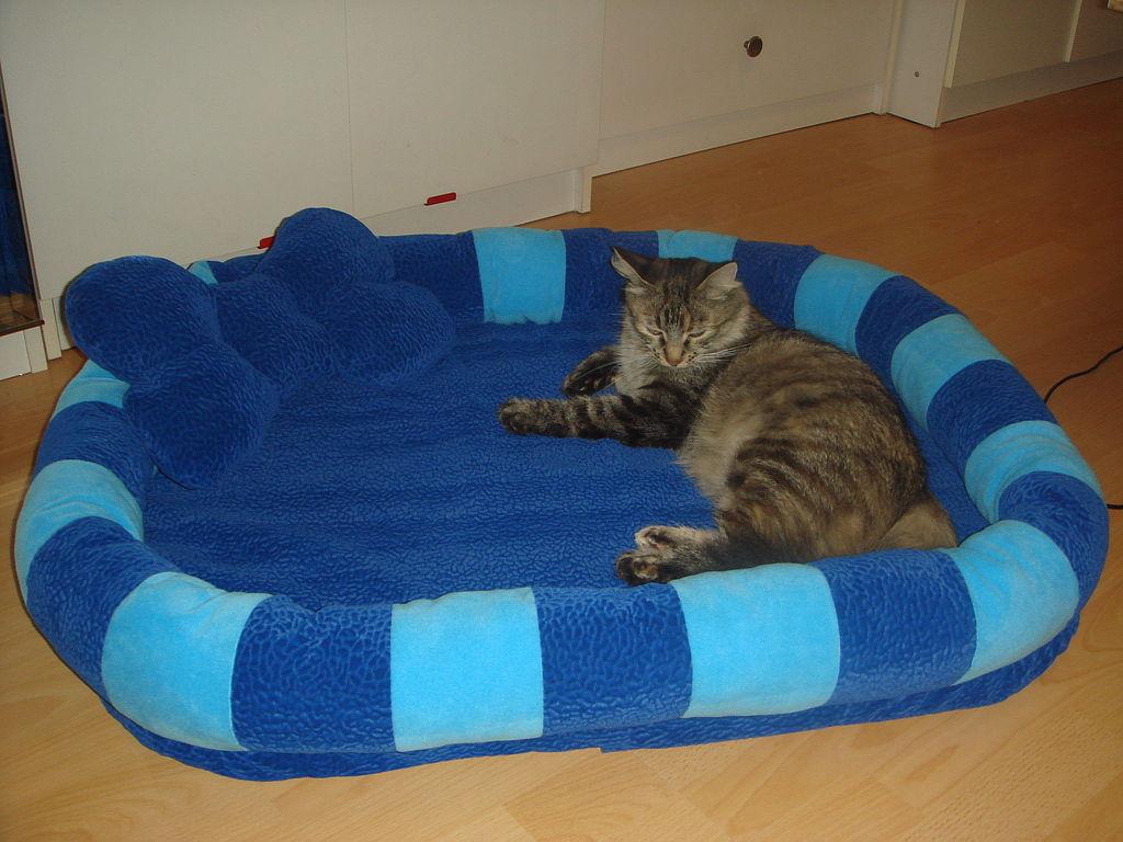 Мастер класс лежанка для кошки своими руками