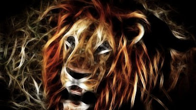 HD Lion Wallpapers for Backgrounds | 3D Lion wallpapers