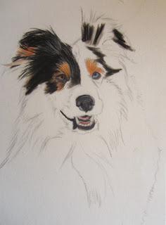 étapes dessin chien