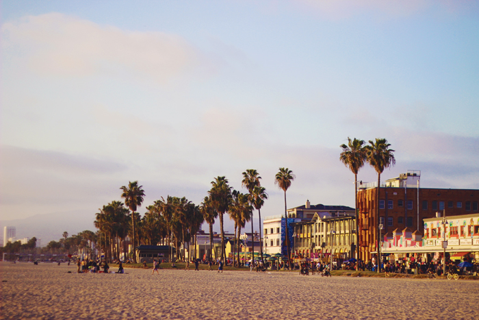 aimerose venice beach los angeles travel blog