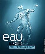 Nouvelle exposition 2020 !!
