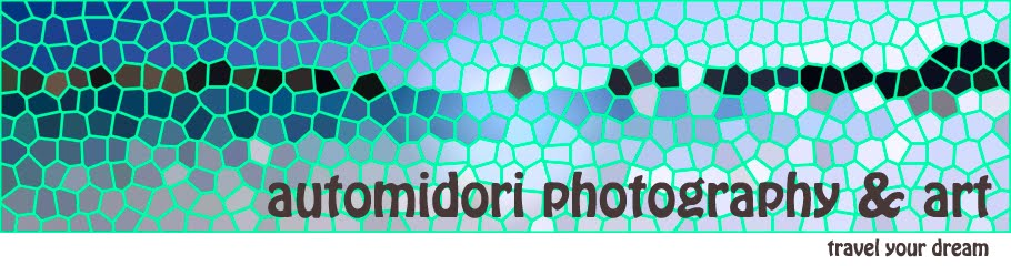 Automidori Photography & Art