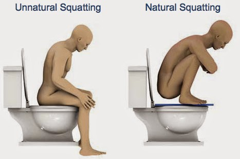 Potty Talk: Why You Should Squat for Better Digestive Health