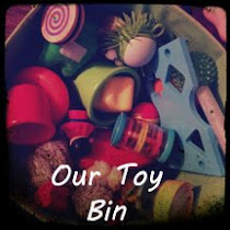 Our Toy Bin