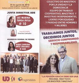 Elecciones ADE 2012