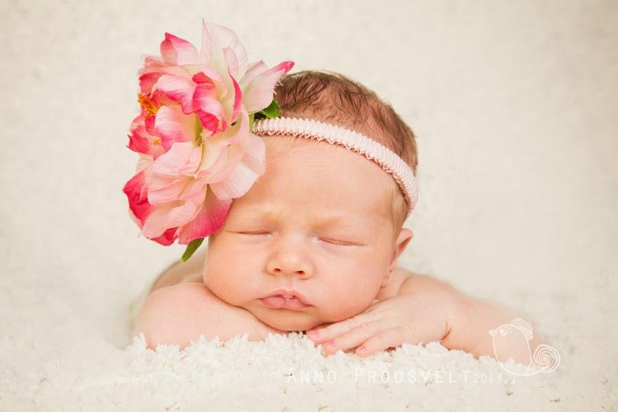 newborn-beebitydruk-portreefoto