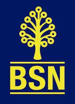Jawatan Kosong di Bank Simpanan Nasional (BSN)