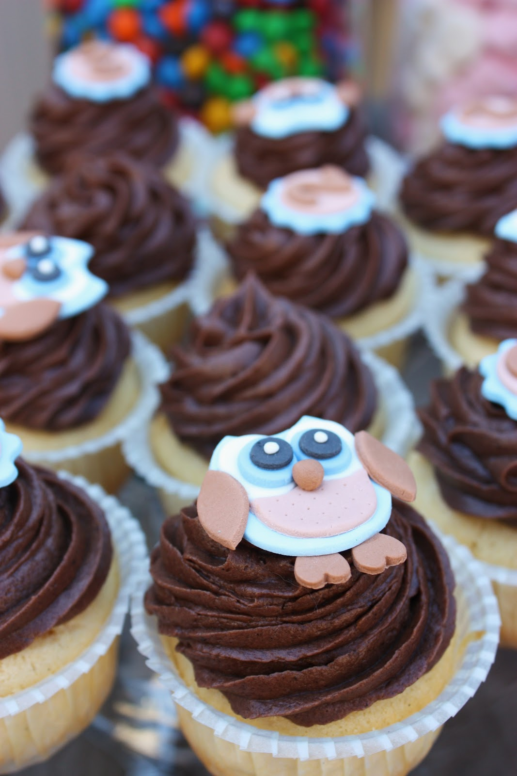 Megann 39 s kitchen owl themed party for Cupcake themed kitchen ideas