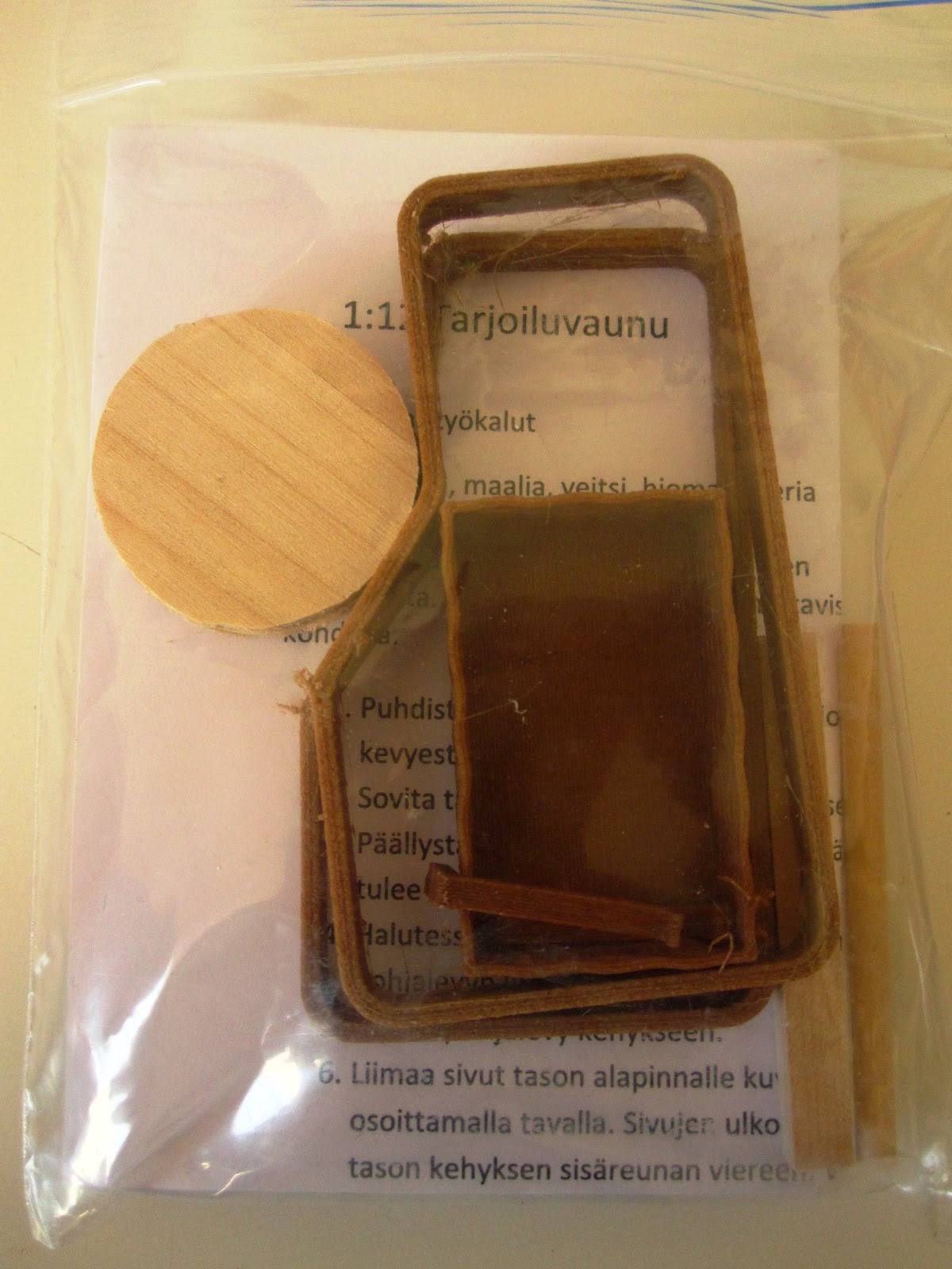 Small ziplock bag containing pieces of wood and a folded instruction sheet