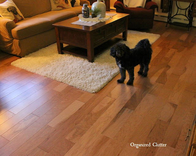 Shaw Jubilee Engineered Floors in Honey Spice