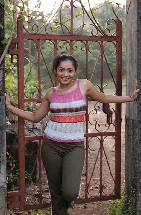 Hot South Indian Actress Photos Movies Reviews News