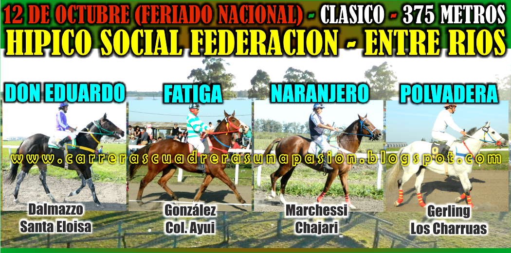 FEDERACION - CLASICO 375