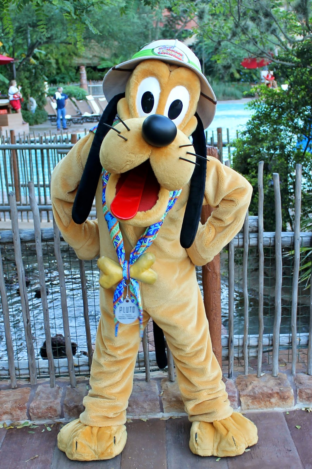 Pluto Animal Kingdom Halloween Disney Character Hunt