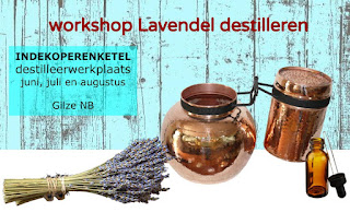 Workshop Lavendel