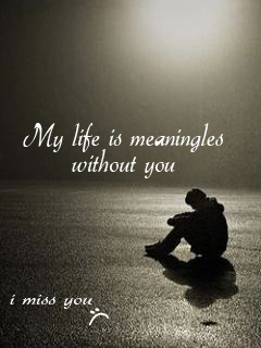 I Miss You My Life Is Meaningless