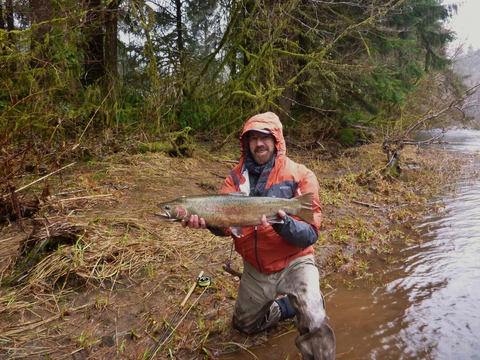 Brian marz 39 s fly fishing oregon blog winter steelhead for Oregon steelhead fishing