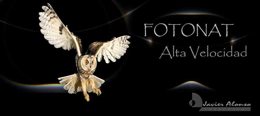FotoNat  Alta Velocidad