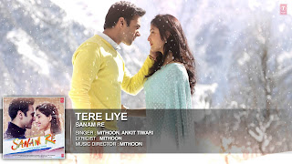 Tere Liye Lyrics from Sanam Re