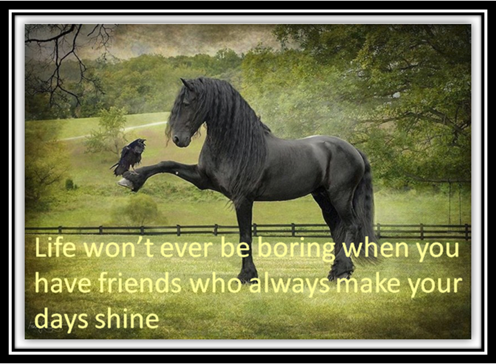 Hindi Quotes on Friendship in English Quotes in English Hindi