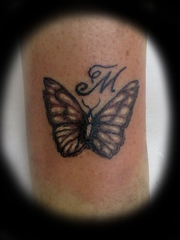 Butterfly 61 title=