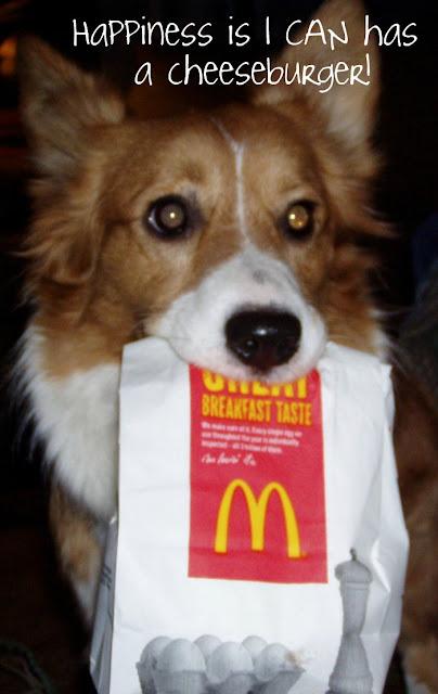 Eno Dog Food
