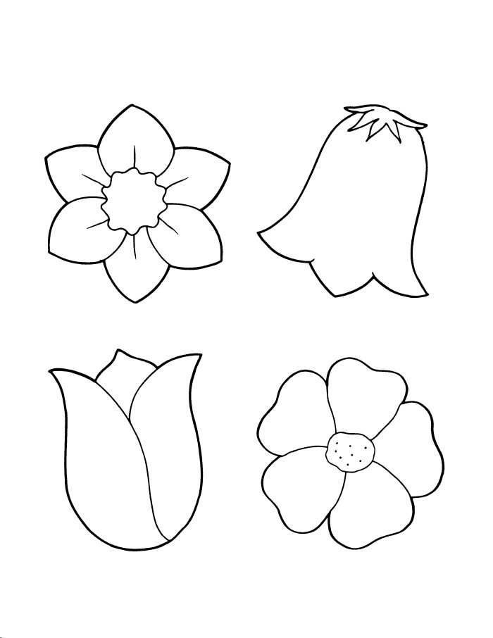 get spring flower coloring sheets and make this wallpaper for your desktop tablet or smartphone device for best results you can choose original size to - Spring Flowers Coloring Pages