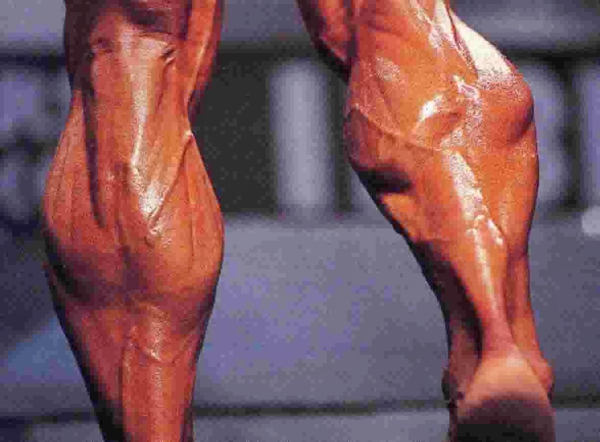 31 Bodybuilders Having Big Calves - Body Building Craze