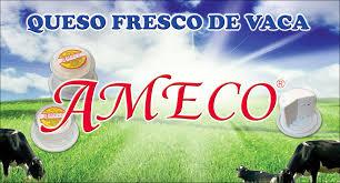QUESO AMECO