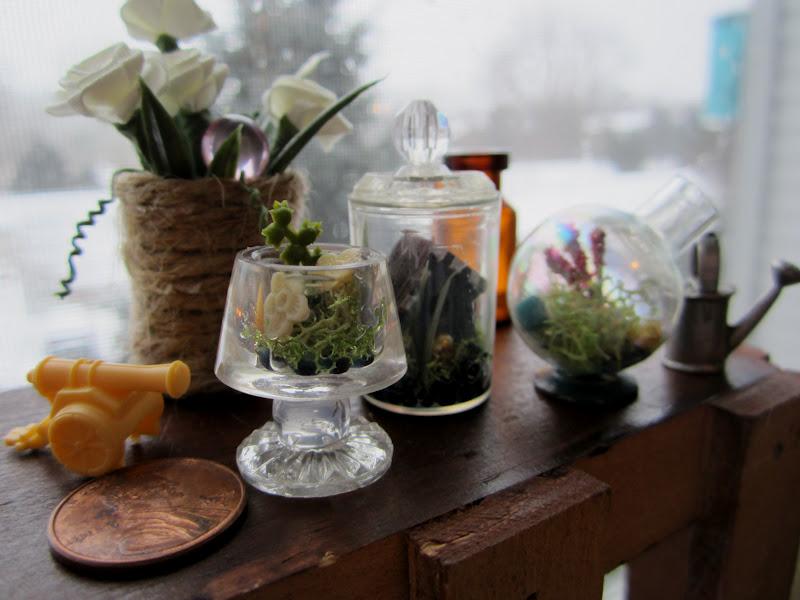 shades of tangerine mini terrarium diy. Black Bedroom Furniture Sets. Home Design Ideas