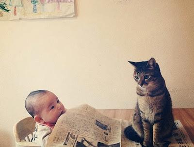 foto kucing bernama toco dan seorang bayi 07