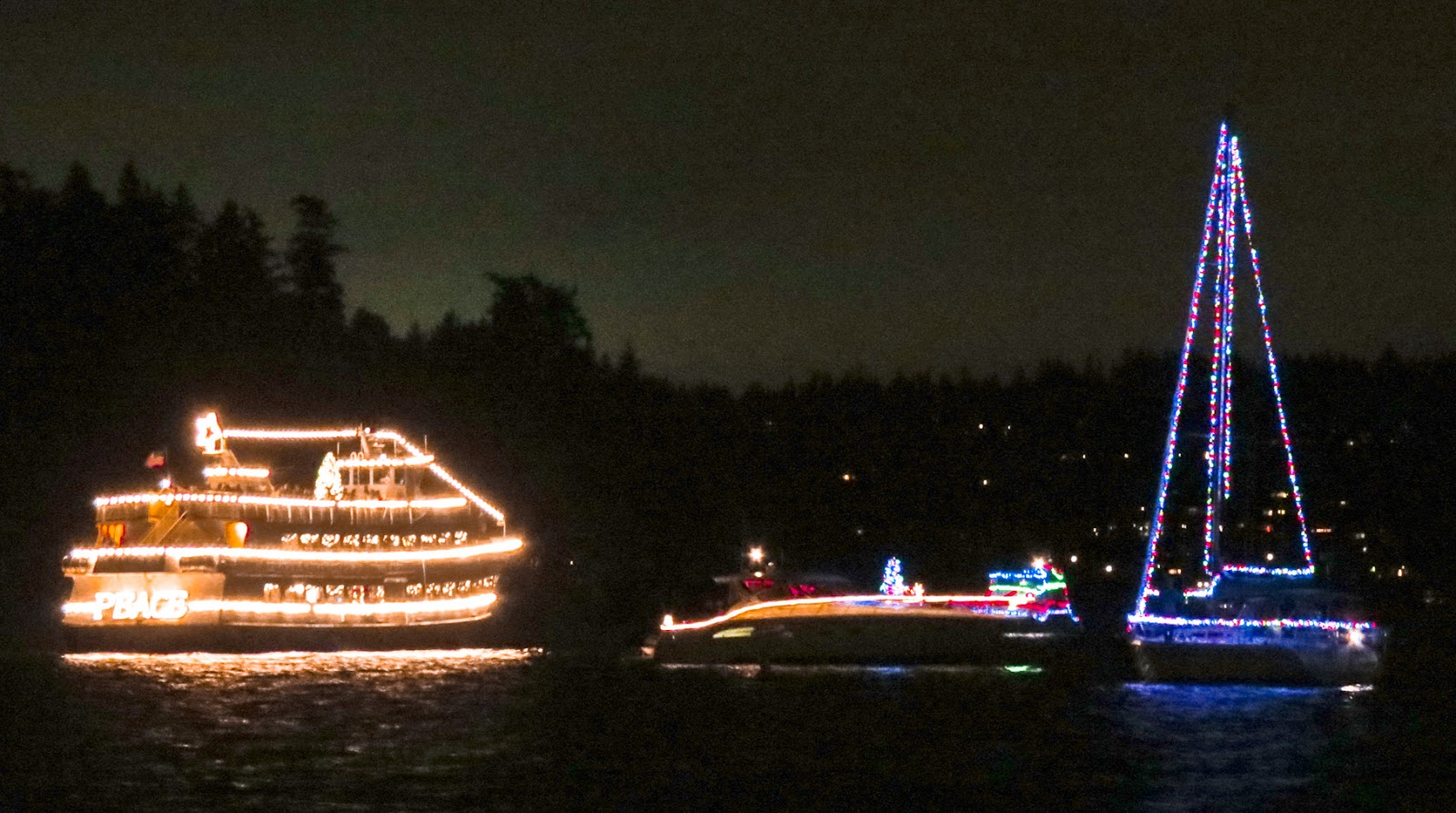the flotilla paused in front of the nearby park and treated our neighborhood to a 20 minute program of christmas music the truly hardy souls gathered along