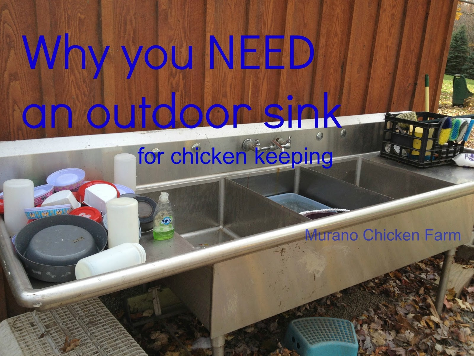 outdoor sink for chicken chores