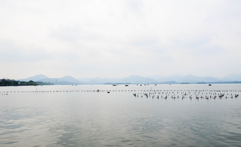 view of the lake of hangzhou