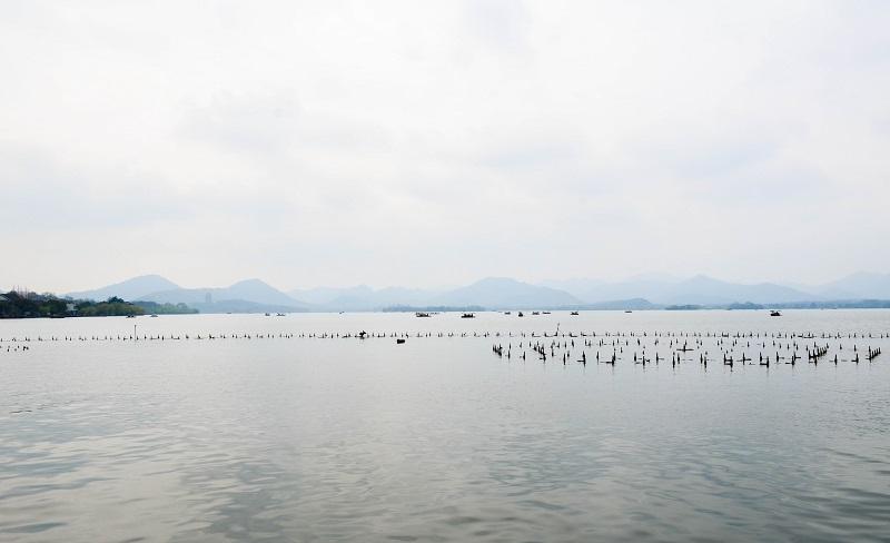 view of the lake of hangzhou