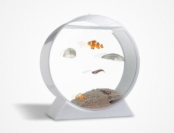 20 Akuarium Paling Unik dan Kreatif di Dunia : Dekstop Jelly Fish Tank