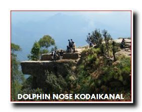 KODAIKANAL DOLPHIN NOSE