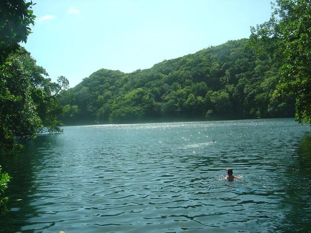 El Lago de las Medusas en Palau