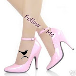 Follow-me ?