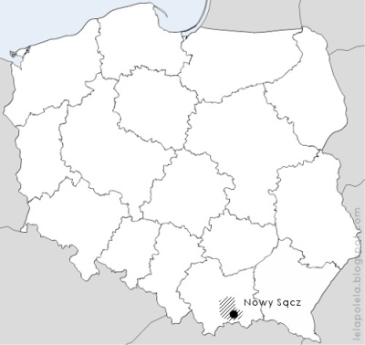 west poland single men Polish women looking for men: search results polish women, men, and jobs.