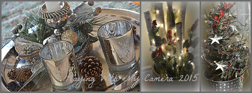 Christmas Season 2015