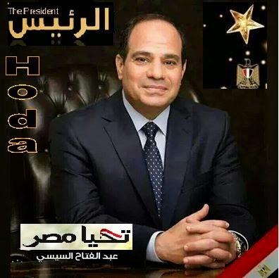 Abdel-Fattah El-Sisi, President