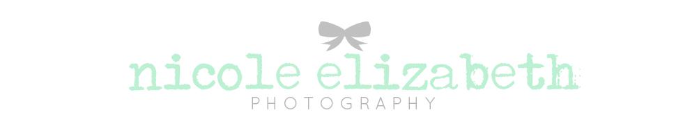 Nicole Elizabeth Photography